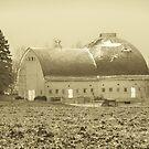 Sepia Tone Old Round Barn by Diane Trummer Sullivan