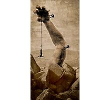 The upper hand...higher heights Photographic Print