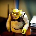 Shrek by Jodi Morgan