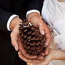 wedding rings on a pine cone by Martin Pot