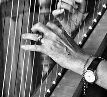 The Harpist's Hands by Di Jenkins