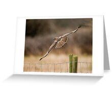 Hawk on the Farm Greeting Card