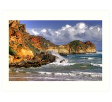 Weathered Coast Art Print