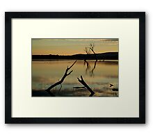 Dead Trees, Lake Fyans, Grampians. Framed Print
