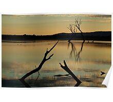Dead Trees, Lake Fyans, Grampians. Poster