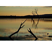 Dead Trees, Lake Fyans, Grampians. Photographic Print