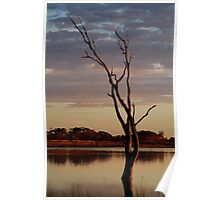 First Light,Lake Fyans Grampians Poster