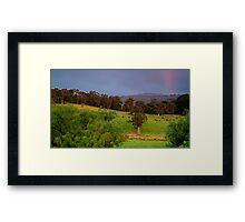 Warm Glow,Otway Farmlands Framed Print