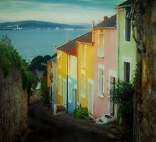 Fishermen's cottages in Mumbles Swansea  by Leighton Collins
