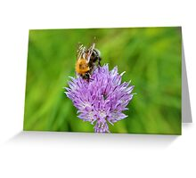 Bee & Chives Greeting Card