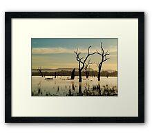 Dead Wood in the Morning Mist,Lake Fyans, Grampians Framed Print