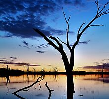 Lake Fyans, Blue Lagoon by Joe Mortelliti