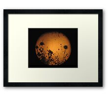 Strawberry Moon Framed Print