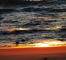 Sunlight On The Surf by Evita