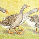 Goose Guards by FranEvans