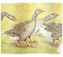 Goose Guards Poster