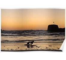 Dogs at Sunset Poster