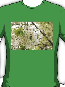 Dreamy White Blossoms - Impressions Of Spring T-Shirt