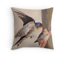 Welcome Swallows Monkey Mia Western Australia Throw Pillow