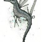 Swiss Army Sea Dragon by Kaitlin Beckett