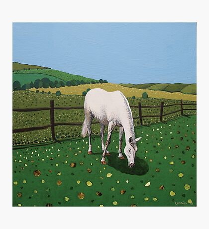 The Horse Photographic Print