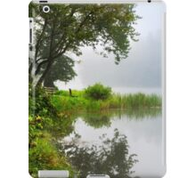 Under a Tree by the Lake Landscape iPad Case/Skin