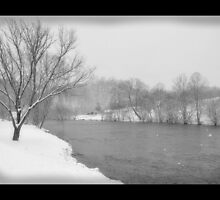 Snowy River by Nokie