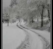 Snowy Roads by Nokie