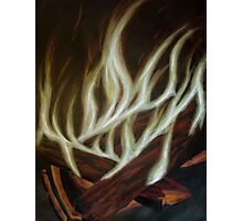 Fall Fire - charcoal and color pencil Photographic Print
