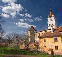 Harman Fortified Church  by Bogdan Ciocsan