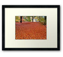 Walking the Russet Carpet Framed Print