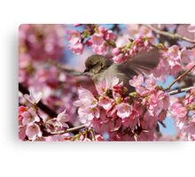 Springtime Makes Me Want to Spread My Wings Metal Print