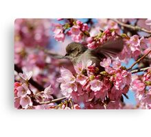 Springtime Makes Me Want to Spread My Wings Canvas Print