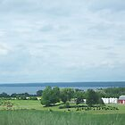 Farm with Seneca Lake in the distance. by debkd