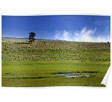 Scenic landscape Poster