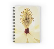 Vermilion Axis Spiral Notebook