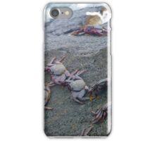 crabs on rocks near the sea iPhone Case/Skin