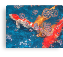 Swim in the Bubbly Canvas Print