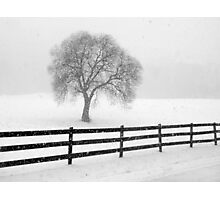 listen: the snow is falling all around Photographic Print