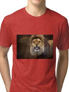 His Majesty Tri-blend T-Shirt