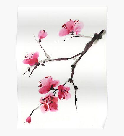 Flowering cherry. Poster