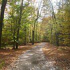 Fall Pa Trail by pambee68