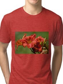 "Daylily ""Raging Wildfire"" Tri-blend T-Shirt"