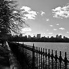 Central Park by Chrissy Edye