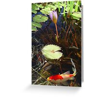 Koi and Waterlily Greeting Card