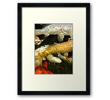 Swimming by... Framed Print