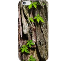 Vine on Bark Abstract iPhone Case/Skin