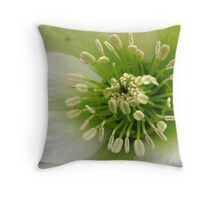Nature's Q~Tips Throw Pillow