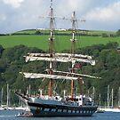 Rigged for Sail - Dartmouth by Mark Baldwyn