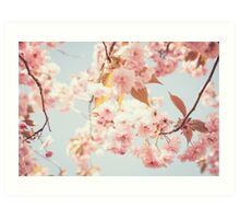 Cherry dream Art Print
